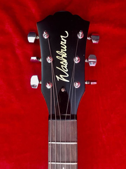 Picture of WASHBURN IDOL limited edition